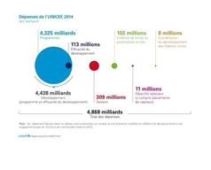 UNICEF Annual Report 2014 PNG Format - French