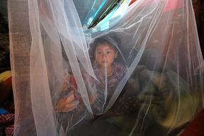 Sophiya Gurung, 3, looks out of a mosquito net that was included in the UNICEF-provided hygiene kit
